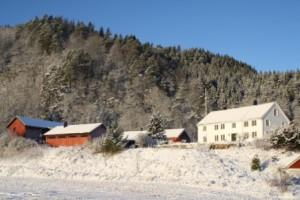 Hele gården - vinter